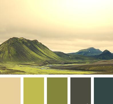 фото болотный цвет