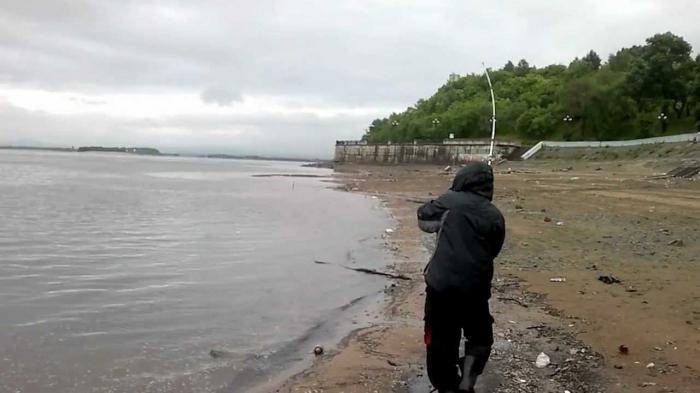 ловля карпа и карася ранней весной видео