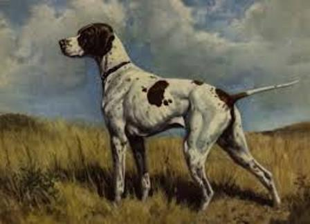 large smooth-haired breed dogs