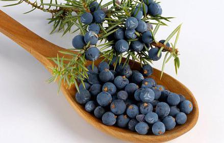 properties of juniper berries