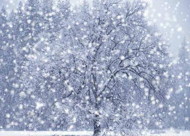 сонник к чему снится снег летом