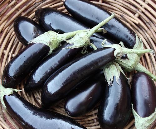 Как приготовить вкусные оладушки на кефире пошаговый рецепт с фото в