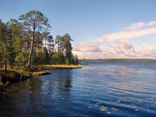 отдых на белом озере вологодская область