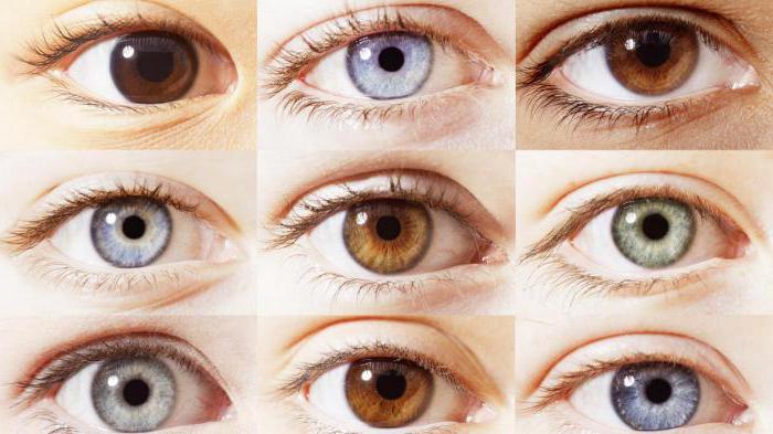 Как в домашних условиях можно поменять цвет глаз 406