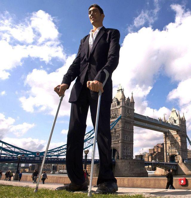 Смотреть самых больших людей в мире