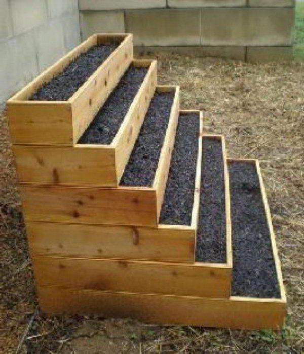vertical beds for strawberries from bottles