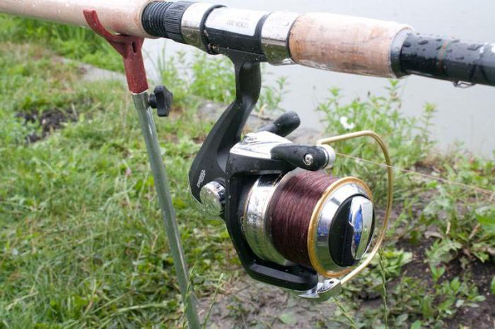 Фидер для начинающих: устройство, техника ловли и виды оснасток