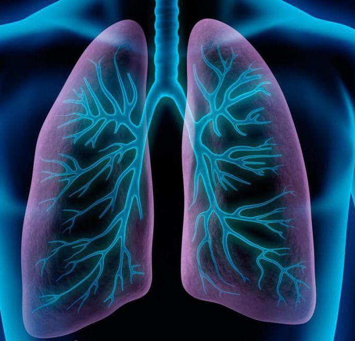 настолько пневмония здоровые легкие картинка фото этого проекта