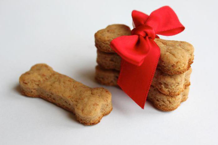 favorite dog treat