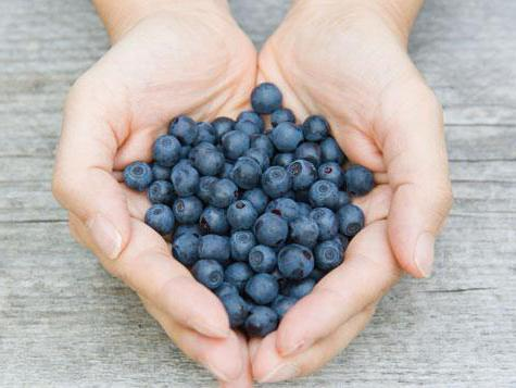 голубика витамины польза