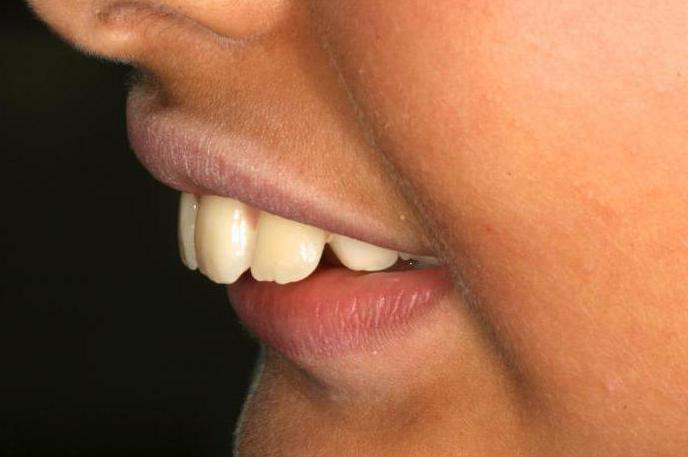 специальность стоматология ортопедическая