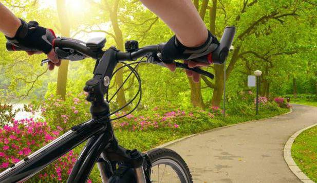 езда на велосипеде расход калорий сколько сжигается