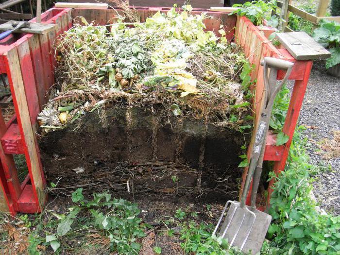 Как правильно сделать компост