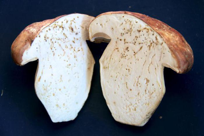 how to clean white mushrooms