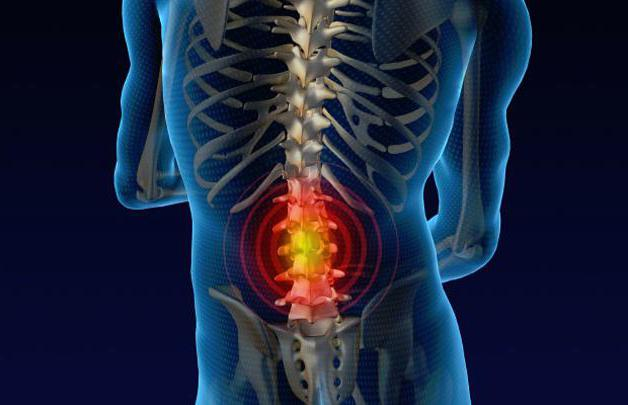 degenerative dystrophic changes of the lumbar spine