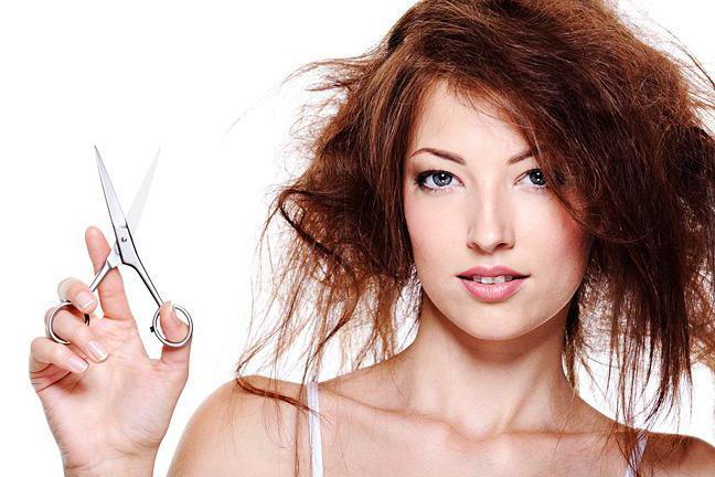 День стричь волосы