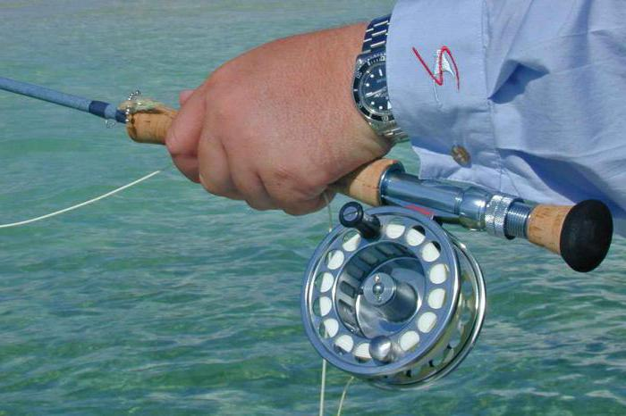 Ловля на кольцо с берега и с лодки :: SYL.ru