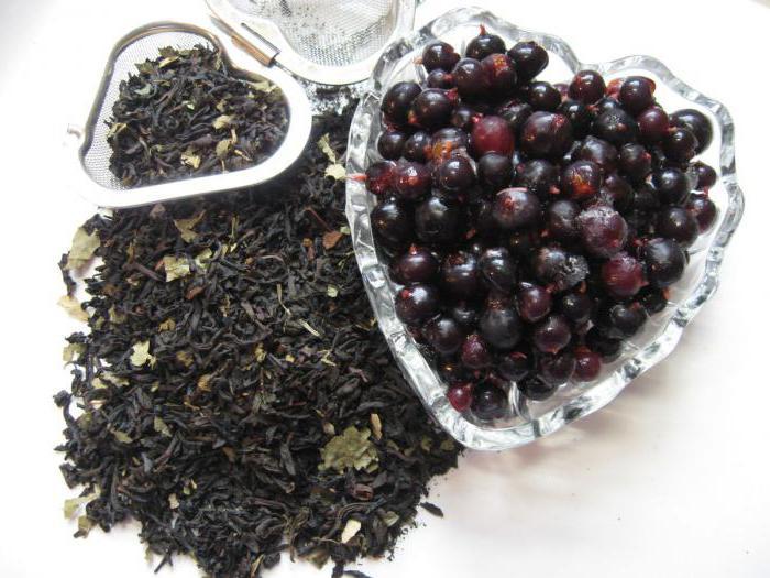 Fermented black currant tea