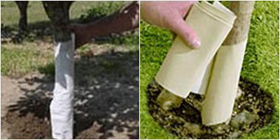 Как в домашних условиях сделать садовый вар