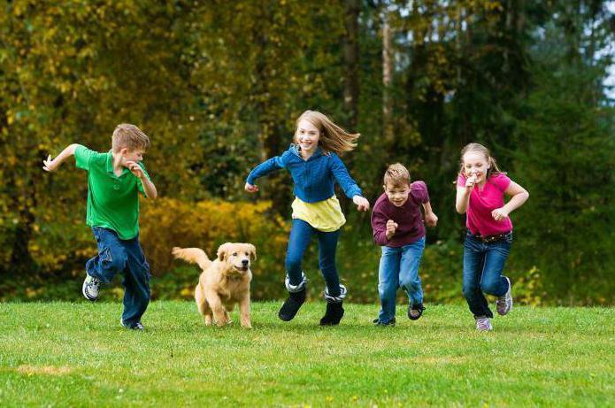 Как начать заниматься с ребенком 5 лет thumbnail