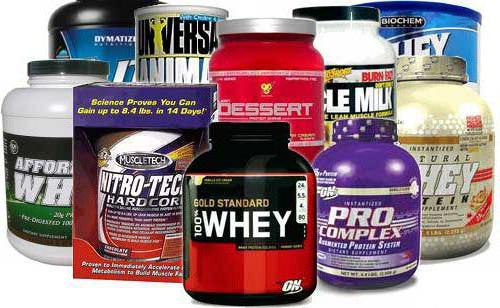 protein shake reviews