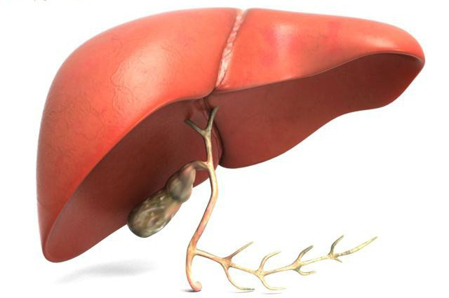 Гептор внутривенно инструкция по применению
