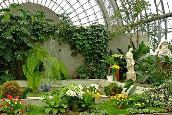 оранжерея в ботаническом саду в москве простой
