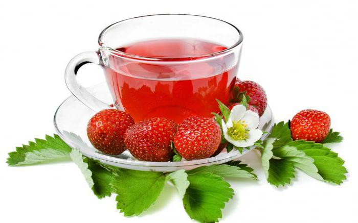 wild strawberry and forest