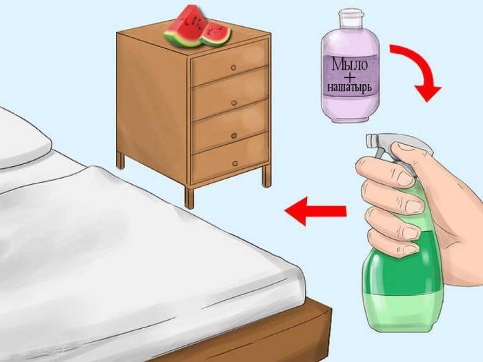 чистка от паразитов народными средствами содой