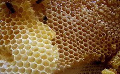 honey rapeseed properties