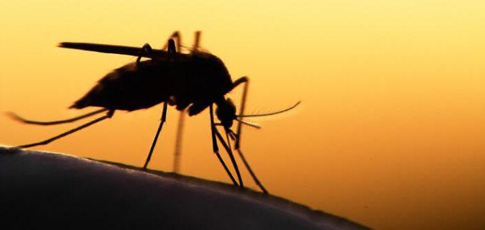 ваниль от комаров отзывы