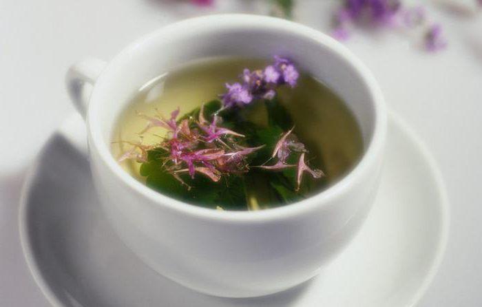 как принимать пурпурный чай
