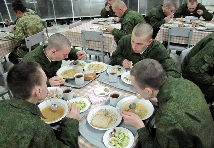 как вести себя в армии новобранцу