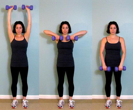 Упражнения с гантелями для снижения веса
