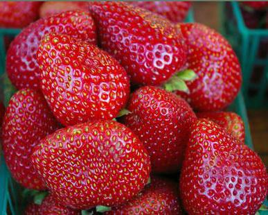 is it possible for nursing mother strawberries