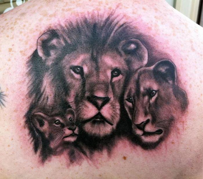 рисунки львов тату