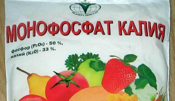potassium monophosphate application for tomatoes