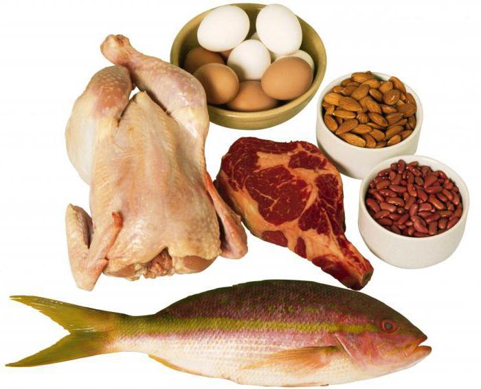 ежедневный рацион правильного питания для похудения женщинам