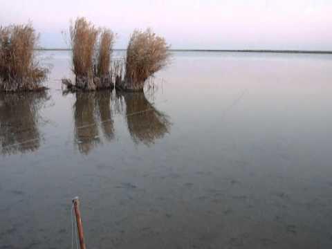 Рыбалка на резинку на реке