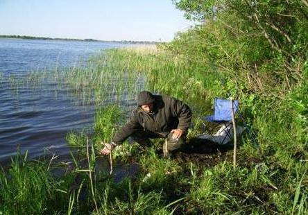 рыбалка ловля на резинку