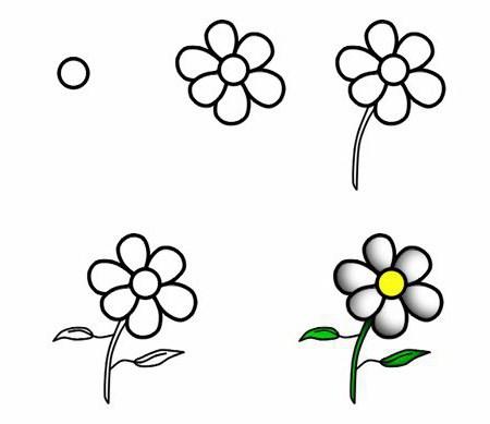 цветы карандашом