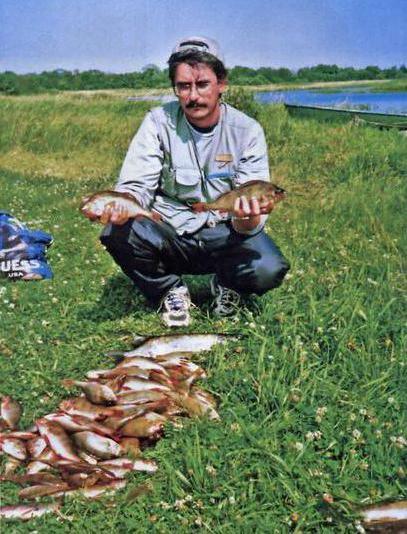 Тростенское озеро (с Онуфриево)