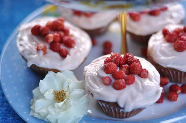 wild strawberry useful properties and contraindications