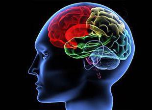 Признаки шизофрении у мужчин фото