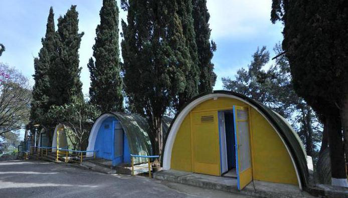 пансионат солнечный абхазия официальный сайт