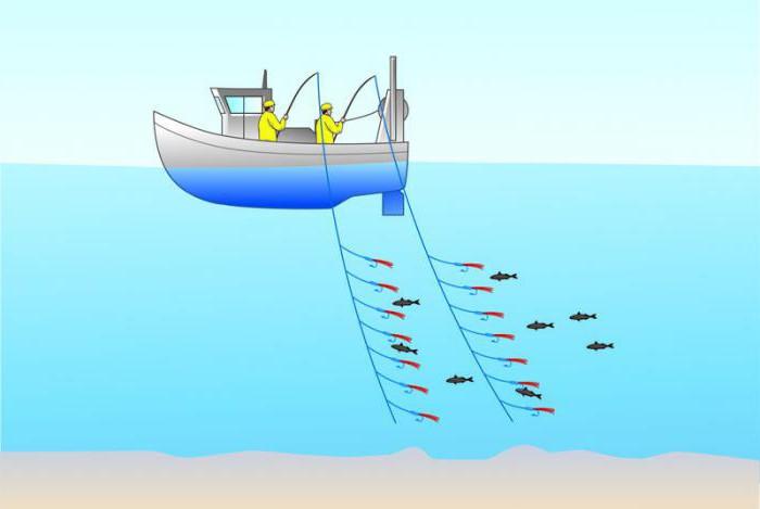 рыбалка троллингом на лодке пвх