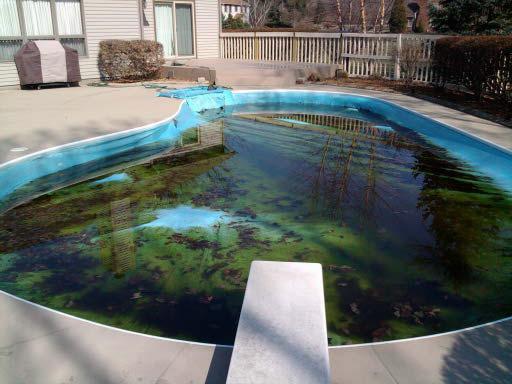 инструкция по очистке бассейна - фото 11
