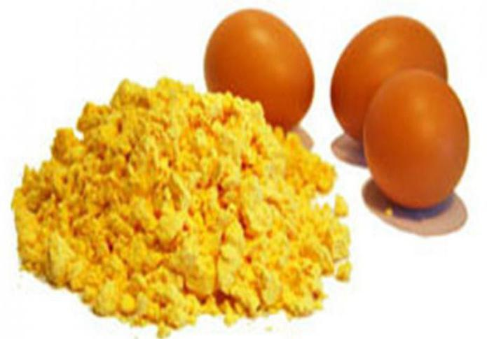 egg protein or whey