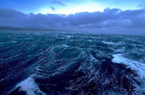 какие моря и океаны омывают россию