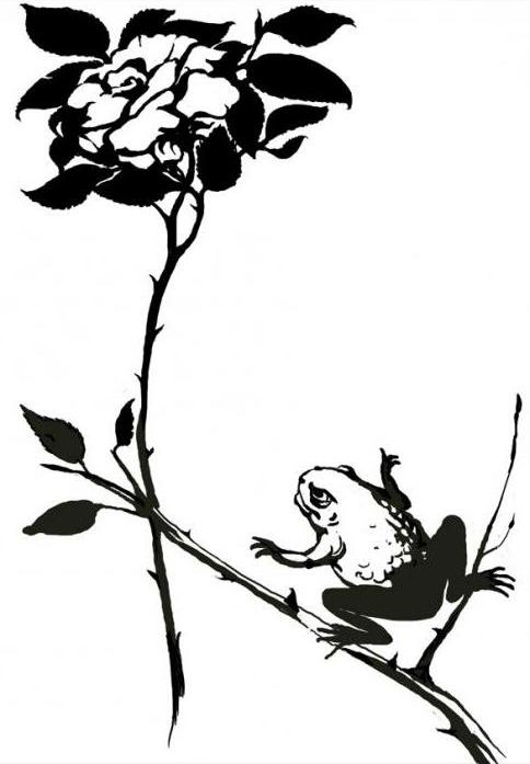 the main idea of the tale of the toad and the rose